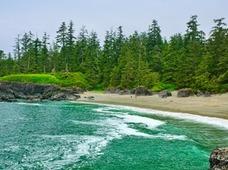 Pacific Rim Vancouver Island