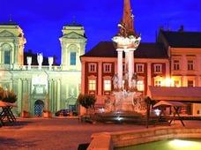Ледницко-Валтицкий ареал